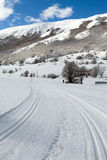Ski Slope transnational Image stock