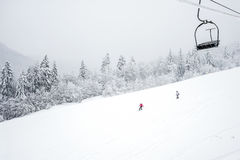 Ski slopes in the coniferous forest in 'Kolasin Royalty Free Stock Photos