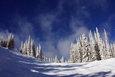 Ski slopes of Silver Star Royalty Free Stock Photography