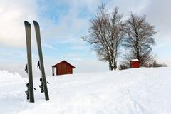 Ski in snow Stock Images