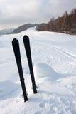 Ski in snow Royalty Free Stock Photo