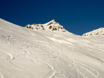 Ski and snowboard  traces in the deep powder snow Stock Image