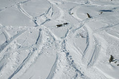 Ski and snowboard tracks Royalty Free Stock Image