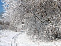 Ski-Spur Stockbild