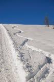 Ski-Spuren im Schnee Stockfoto