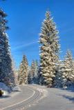 Ski-Straße zu Orle lizenzfreies stockfoto
