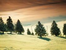 Ski sunset Stock Image