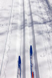 Ski touring and ski tracks in Winter Royalty Free Stock Photography