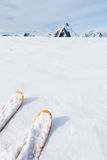 Ski tips, snow field and mountain landscape in background (the M Royalty Free Stock Photos