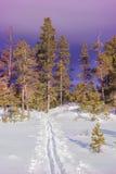 Ski tour Stock Photos