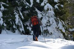 Ski-touring in mountains. Royalty Free Stock Images