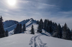 Ski touring track in beautiful sunny winter landscape, Oberstdorf, Germany Royalty Free Stock Photos