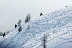 Ski traces on snow Royalty Free Stock Photos