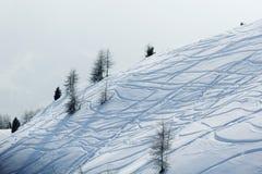 Ski traces on snow Royalty Free Stock Photos
