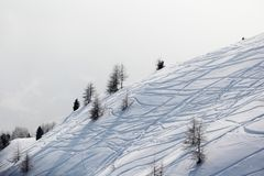 Ski traces on snow Stock Photography