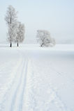 Ski track. A ski track leading towards some trees all covered with frost. A lake in the background Stock Photo