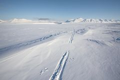 Ski track on the Arctic glacier Stock Photography
