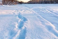 Ski track and footpath on the outskirts of the city stock photo