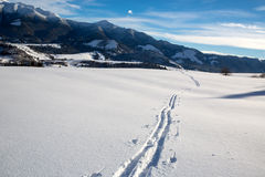 Ski track on meadow Stock Image