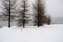 Marking with flags for winter sports. Ski track in the Park, marking for sports, family holidays, winter sports Stock Photos
