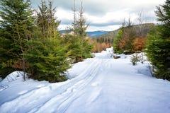 Ski track in snow Stock Image