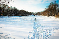 Ski track in snowy park in bright day Royalty Free Stock Photography