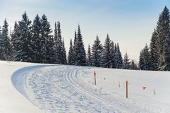 Ski track. Turn with flags in the winter forest. Ski track. Turn with flags in the winter forest royalty free stock image