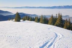 Ski track in winter mountain land Stock Photo