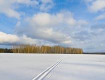 Ski track Royalty Free Stock Image