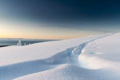 Ski Tracks Foto de Stock Royalty Free