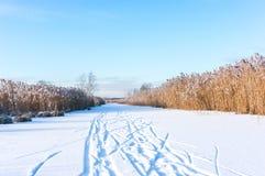 Ski Tracks Lizenzfreie Stockfotos
