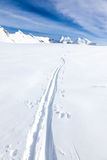 Ski tracks of a backcountry skier on the fresh snow of a large g Royalty Free Stock Images