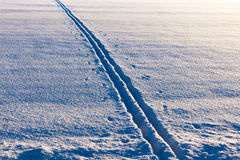 Ski tracks in evening sun Royalty Free Stock Images