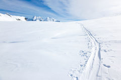 Ski tracks on the fresh snow of a large glacier Royalty Free Stock Photography