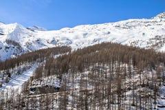 Ski Tracks in montagne svizzere in Saas-tassa Fotografie Stock
