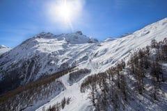 Ski Tracks in montagne svizzere in Saas-tassa Immagine Stock Libera da Diritti