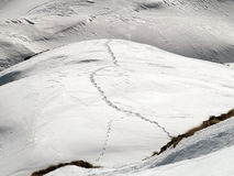 Ski tracks in mountain snow Royalty Free Stock Images