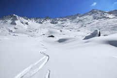 Ski tracks in the powder snow Royalty Free Stock Image