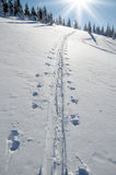 Ski tracks in the snow Royalty Free Stock Image