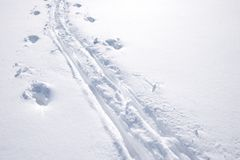 Ski tracks with space for copy Stock Photo