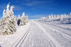 Ski trail Royalty Free Stock Photography