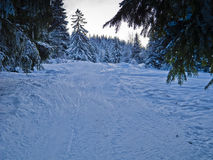 Ski trail Royalty Free Stock Photos