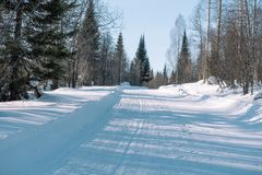 Ski trail in the forest. Traasa in the winter forest. The road for walking through the winter forest. Taiga in the winter. Tracks. From the snowcat. Footprints royalty free stock photos