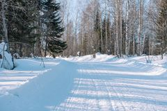 Ski trail in the forest. Traasa in the winter forest. The road for walking through the winter forest. Taiga in the winter. Tracks. From the snowcat. Footprints stock images