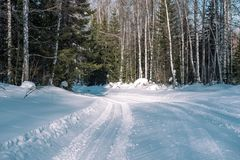 Ski trail in the forest. Traasa in the winter forest. The road for walking through the winter forest. Taiga in the winter. Tracks. From the snowcat. Footprints royalty free stock images