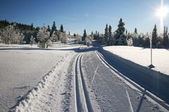 Ski trails Stock Photography