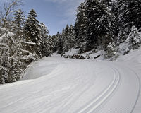 Ski trails for cross-country in mountain forest Stock Photo