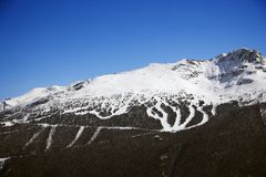 Ski trails on mountain. Stock Photography
