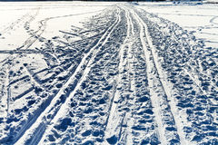 Ski trails in snowy field in winter day Royalty Free Stock Image