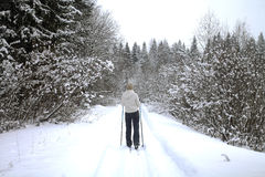 Ski Trip nella foresta di inverno Fotografia Stock